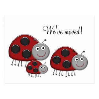 Ladybug Change of Address Cards Postcard