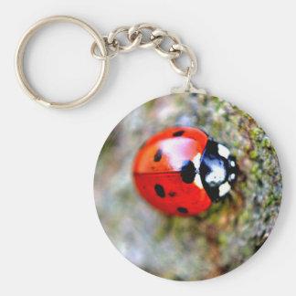 Ladybug Crawling on Tree Trunk Keychains