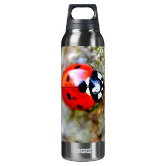 Ladybug Crawling on Tree Trunk 16 Oz Insulated SIGG Thermos Water Bottle