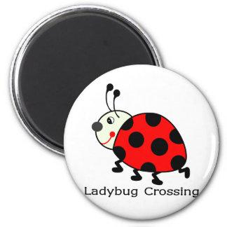 Ladybug Crossing Refrigerator Magnets
