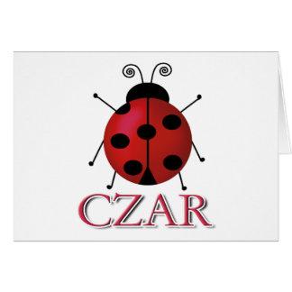 Ladybug Czar Card