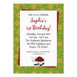 Ladybug Daisies Birthday Party Invitations