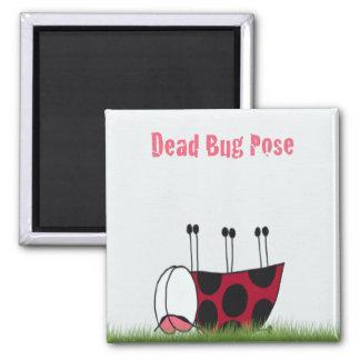 Ladybug Dead Bug Yoga Pose ~ Magnet