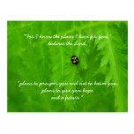 Ladybug Encouragement Postcard