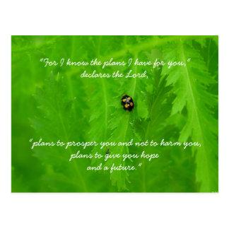 Ladybug Encouragement Post Card
