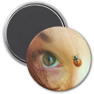 ladybug face magnet