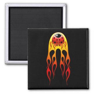 Ladybug Flames Magnet