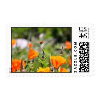 Ladybug flying off flower stamp