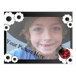 Ladybug Frame Post Cards