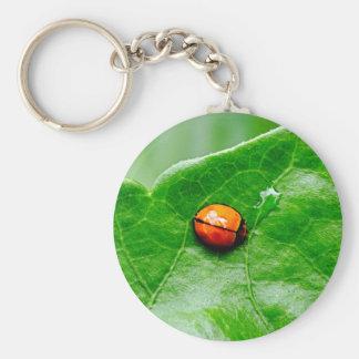 Ladybug Getting a Drink Keychain