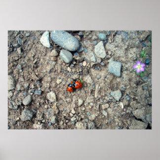 Ladybug Group Hug Poster