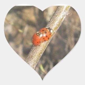 Ladybug Heart Stickers
