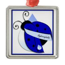 Ladybug Hydrocephalus Ornament