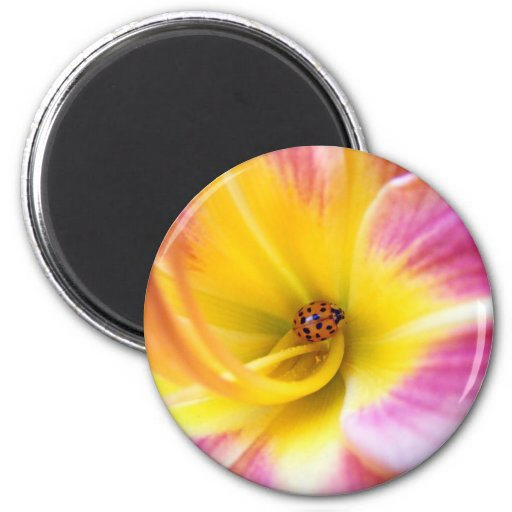 Ladybug in Lilly 2 Inch Round Magnet