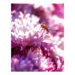 Ladybug in pink letterhead template
