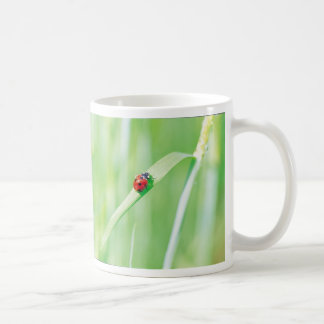 Ladybug in the Grass Classic White Coffee Mug