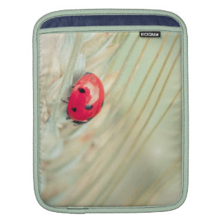 Ladybug iPad Sleeves
