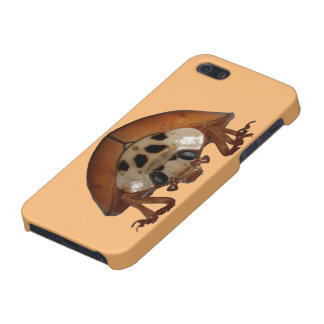 Ladybug iPhone 5/5S Cover