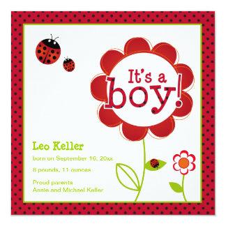 Ladybug 'it's a boy' announcement card