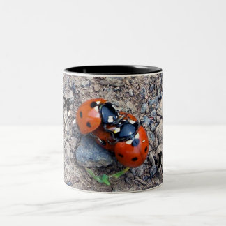 Ladybug Kisses Two-Tone Coffee Mug