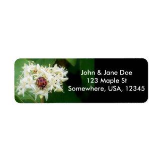 LadyBug Label