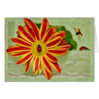 Ladybug Ladybug Ladybug! Card