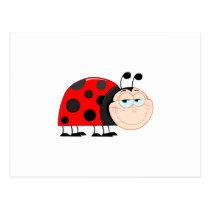 Ladybug Ladybugs Bug Bugs Funny Insect Cute Smile Postcard