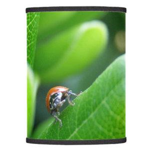 Bug lamp shades zazzle ladybug lamp shade mozeypictures Choice Image