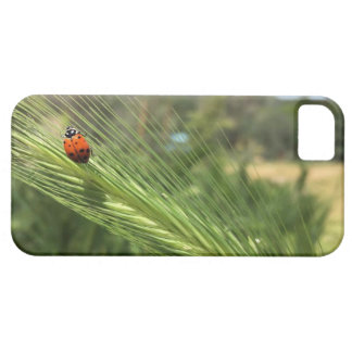 Ladybug Life on Tosca iPhone SE/5/5s Case