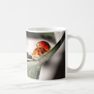 Ladybug Love! Coffee Mug