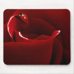 Ladybug Love Mouse Pad