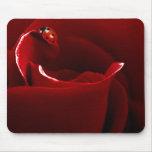 Ladybug Love Mousepads