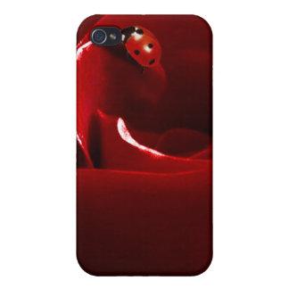 Ladybug Love Personalized Iphone 4 Case