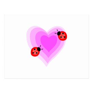 Ladybug Love Postcard