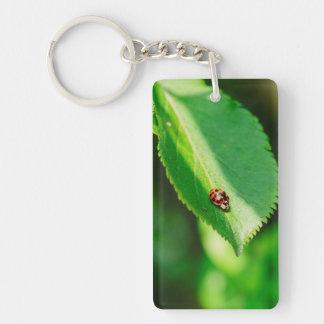 Ladybug macro acrylic key chain