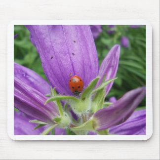 Ladybug Mousepads