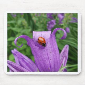 Ladybug Mousepad
