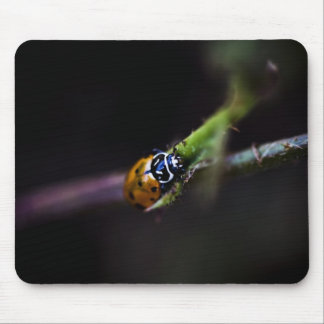 Ladybug mousepad black