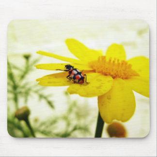 Ladybug on a flower mouse pads