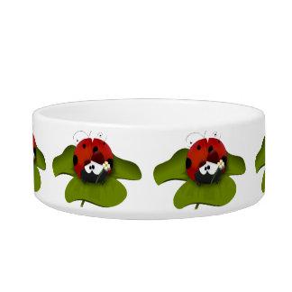 Ladybug on a green leaf bowl
