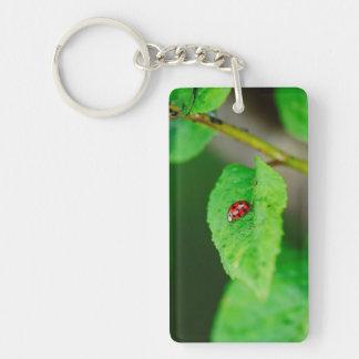 Ladybug on a leaf rectangular acrylic keychain