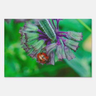 Ladybug on a purple flower macro yard sign