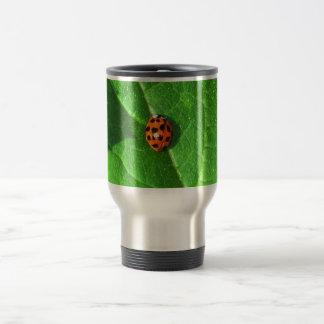 Ladybug On A Squash leaf Travel Mug