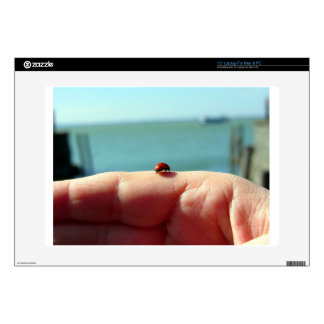 Ladybug on a woman hand in front of the lake decal for laptop