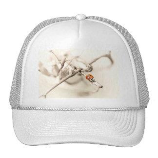 ladybug on branch trucker hat