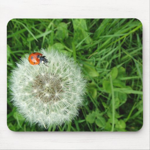 Ladybug on Dandelion Mouse Pad