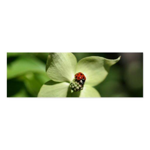 Ladybug On Dogwood Flower Photo Mini Bookmark Business Card