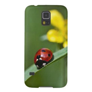 Ladybug on Grass close up Galaxy S5 Case
