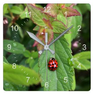 ladybug on leaf square wall clock