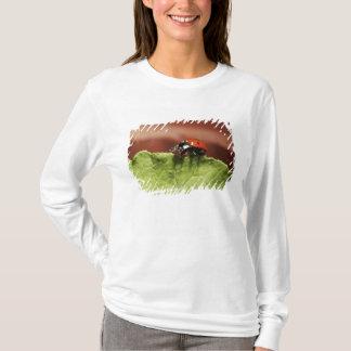 Ladybug on lettuce leaf (MR) T-Shirt